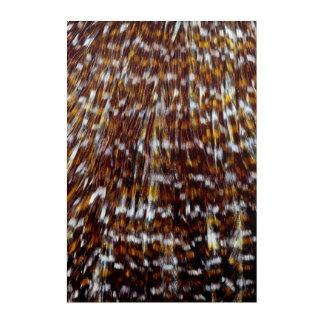 Impressions En Acrylique Conception de plume de plume de cou