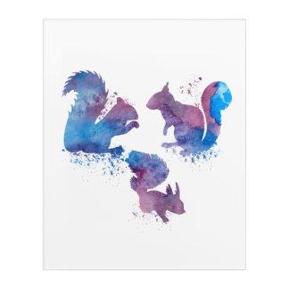 Impressions En Acrylique Écureuils