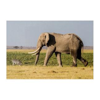 Impressions En Acrylique Éléphant marchant par un point d'eau