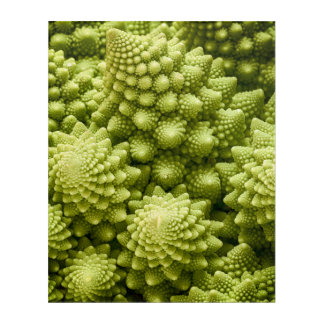 Impressions En Acrylique Fin de légume de brocoli de Romanesco