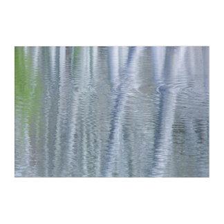 Impressions En Acrylique Île des arbres d'aulne | Bainbridge, WA