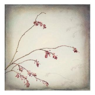 Impressions En Acrylique La branche de prunier avec le ressort bourgeonne |