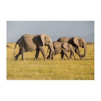 Impressions En Acrylique Marche de famille d'éléphant