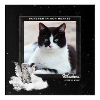 Impressions En Acrylique Mémorial de chat avec la date et la photo nommées