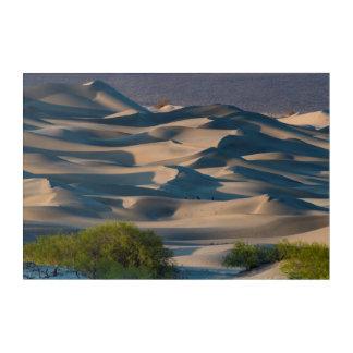 Impressions En Acrylique Paysage de dune de sable, la Californie