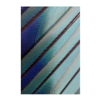 Impressions En Acrylique Plume lilas bleue de rouleau de Breasted