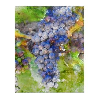 Impressions En Acrylique Raisins de vin rouge sur la vigne
