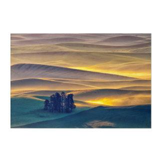 Impressions En Acrylique Rolling Hills de blé au lever de soleil | WA