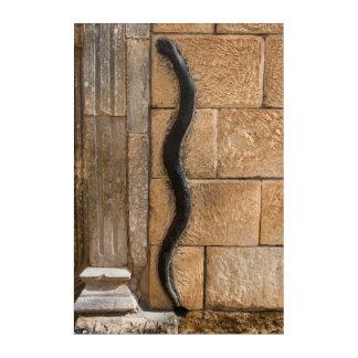 Impressions En Acrylique Sculpture en serpent chez Amna Suraka