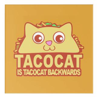 Impressions En Acrylique Tacocat vers l'arrière II