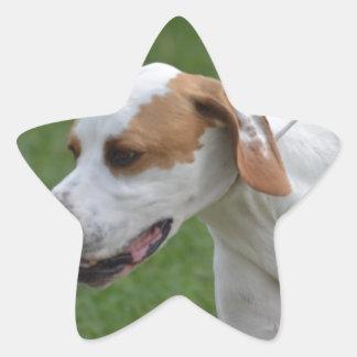 Indicateur portugais mignon sticker en étoile