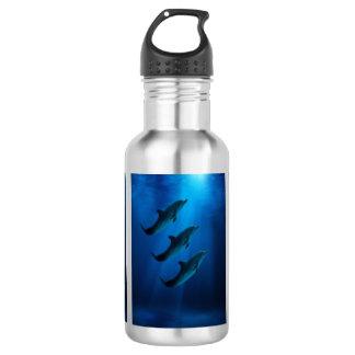 Inoxydable volez la bouteille d'eau avec des