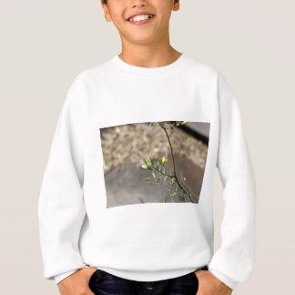 Insecte sur la fleur sweatshirt