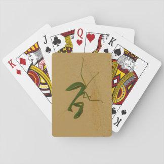 Insecte vert jeu de cartes