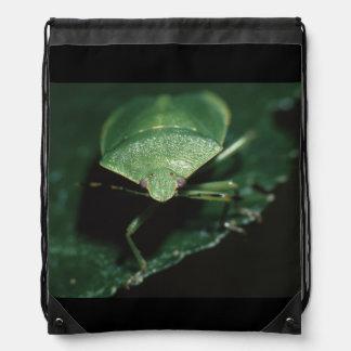 insecte vert sacs à dos