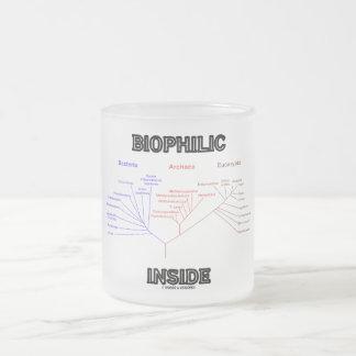 Intérieur Biophilic (arbre de la vie phylogénétiqu Mug