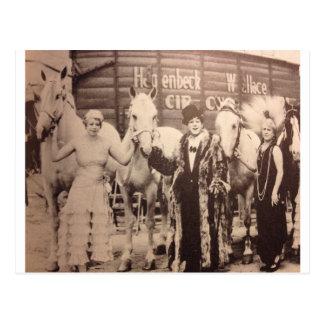 Interprètes de cirque et chevaux blancs cartes postales