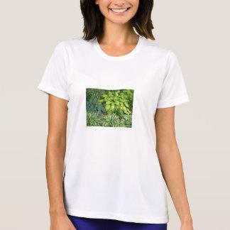Interrogez-moi au sujet de la pièce en t de mes t-shirt