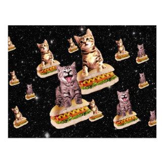 invasion de chat de hot-dog carte postale
