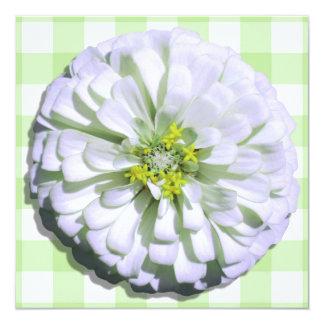 Invitation - Zinnia blanc Lemony