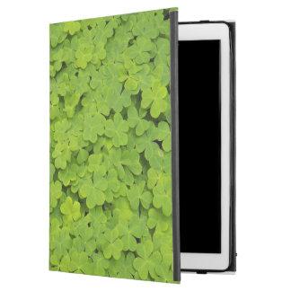 "iPad Pro 12.9"" Case Shamrocks verts floraux"