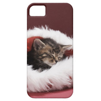 iPhone 5 Case Chaton endormi dans le casquette de Noël