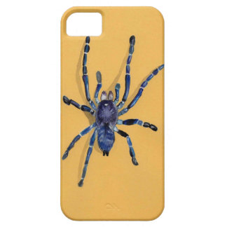 iPhone 5 Case illustration d'une araignée