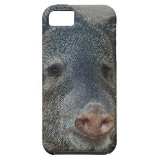 iPhone 5 Case Javelina ou Peccary