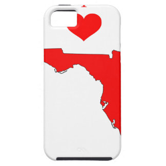 iPhone 5 Case La Floride