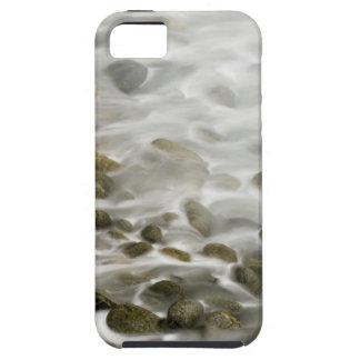 iPhone 5 Case Réservation en pierre d'état de Lobos de point de