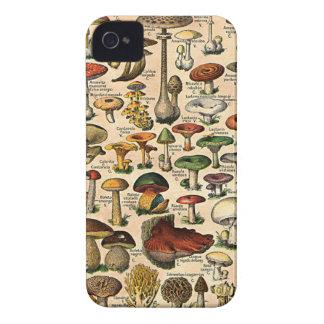 iPhone vintage 4 Barely-There de guide de champign Étui iPhone 4