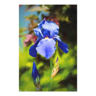 Iris bleu impression photo