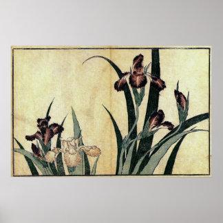 Iris de Katsushika Hokusai Posters