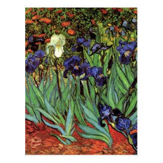 Iris de Van Gogh, art vintage de post Cartes Postales