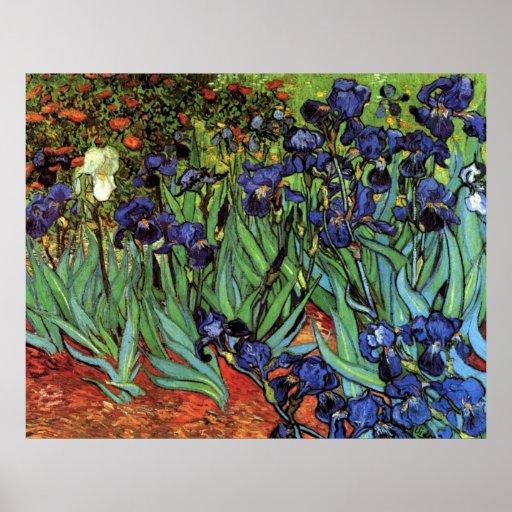 Iris de Van Gogh, art vintage de post