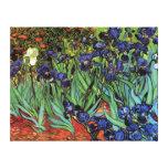 Iris de Van Gogh, beaux-arts vintages de jardin Toile Tendue