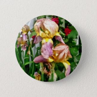 Iris par la clôture badges