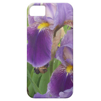 Iris pourpre iPhone 5 case