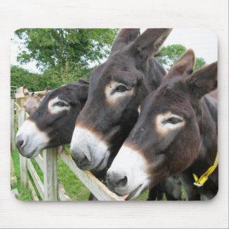 J aime des ânes tapis de souris
