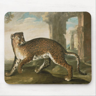 Jaguar Tapis De Souris