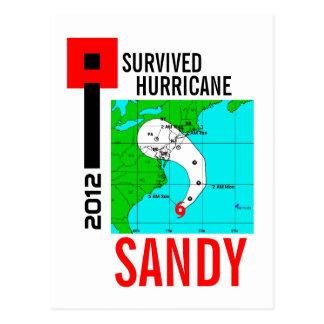 J'ai survécu à la carte postale 1 de Sandy