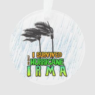 J'ai survécu à l'ouragan Irma