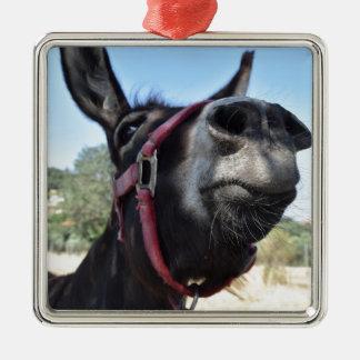 J'aime des ânes ! ornement carré argenté