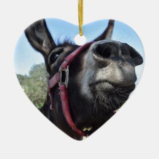 J'aime des ânes ! ornement cœur en céramique