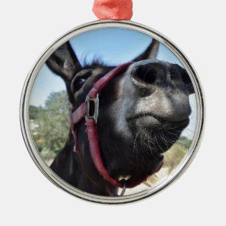 J'aime des ânes ! ornement rond argenté