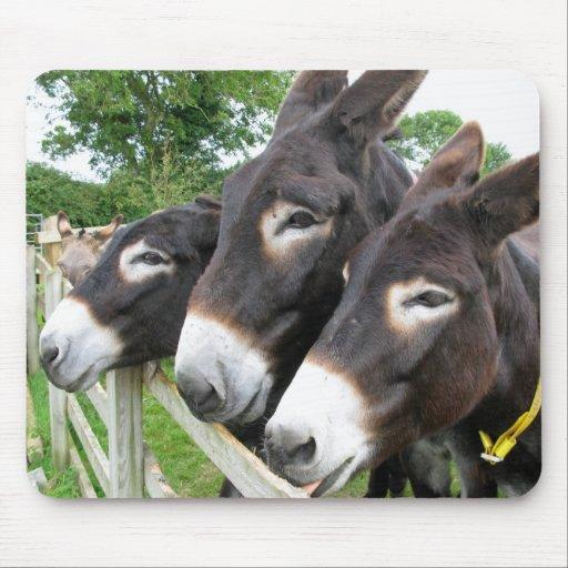 J'aime des ânes ! tapis de souris