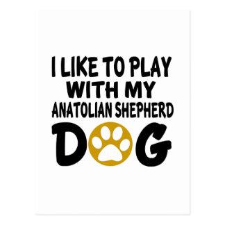 J'aime jouer avec mon chien anatolien de chien de carte postale
