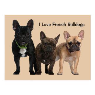 J'aime les bouledogues français cartes postales