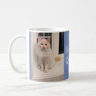 J'aime ma tasse de Ragdoll