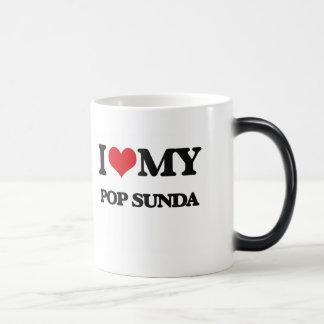 J'aime mon POP SUNDA Mug